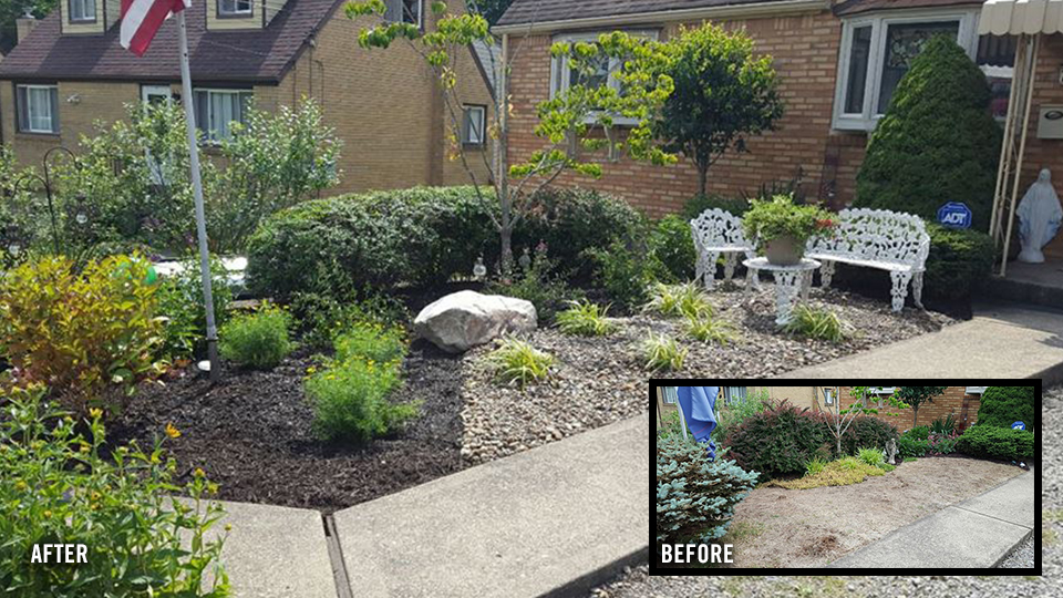 LandscapeRenovation